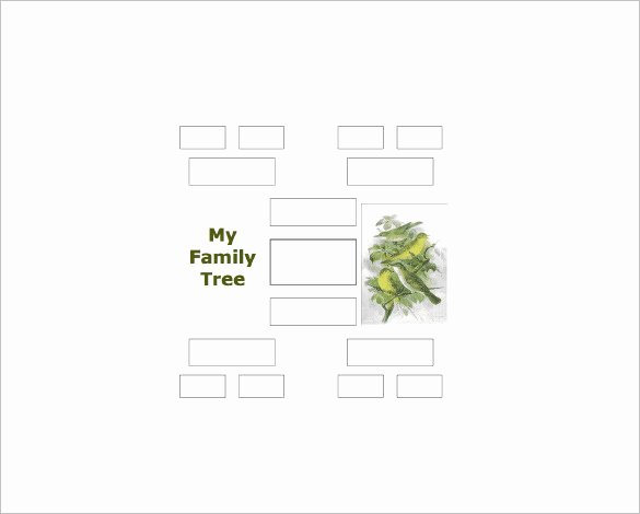 4 Generation Family Tree Templates Inspirational 4 Generation Family Tree Template – 12 Free Sample
