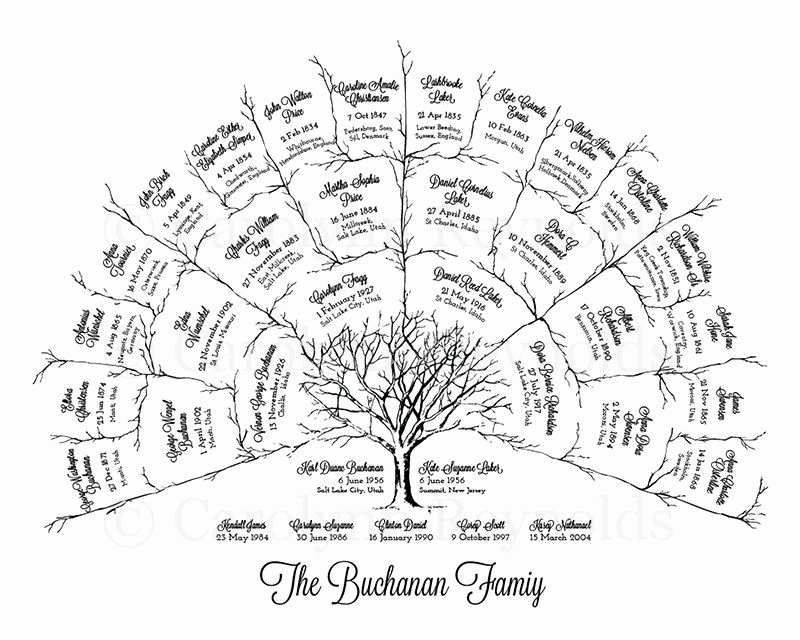 4 Generation Family Tree Templates Lovely Ancestor & Genealogy Family Tree Fan Chart 4 Generations