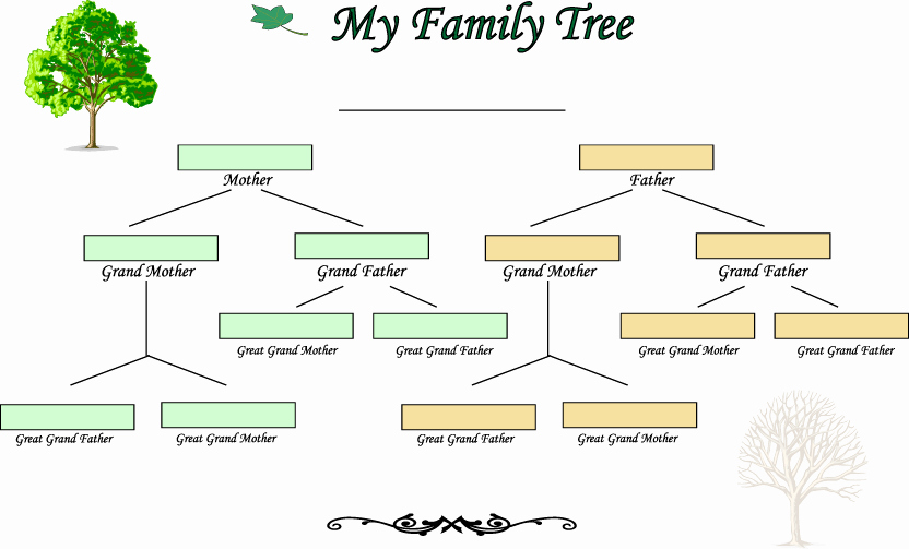 4 Generation Family Tree Templates Lovely Blank Family Tree Template