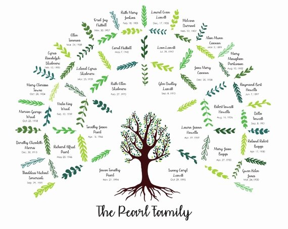 4 Generation Family Tree Templates Luxury Custom Family Tree Four Generation Digital File Only