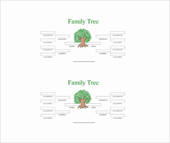 4 Generation Family Tree Templates Unique 4 Generation Family Tree Template – 12 Free Sample