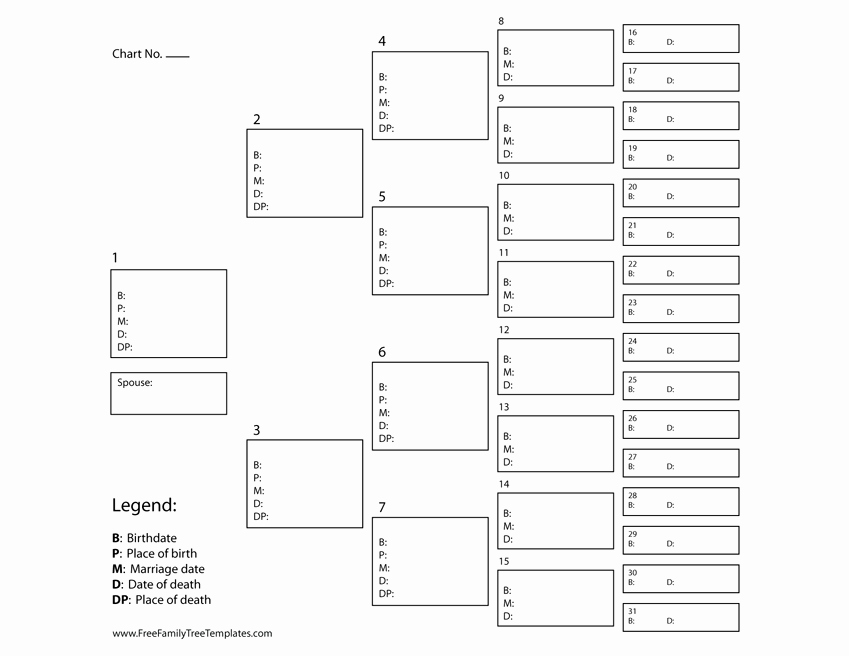 5 Generation Family Tree Template Best Of 5 Generation Ancestor Chart – Free Family Tree Templates