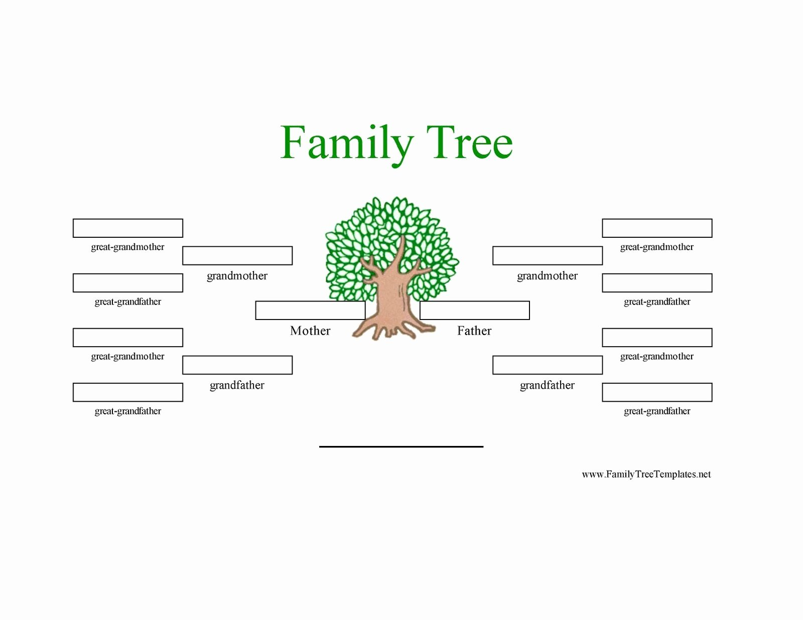 5 Generation Family Tree Template Elegant 12 Generation Family Tree Sample
