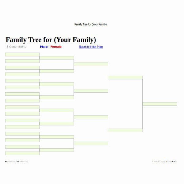 5 Generation Family Tree Template New 5 Family Tree Templates Doc Pdf