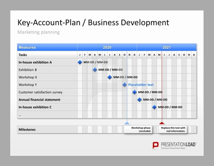 Account Management Plan Template Awesome Account Plan Template Ppt Amsauh