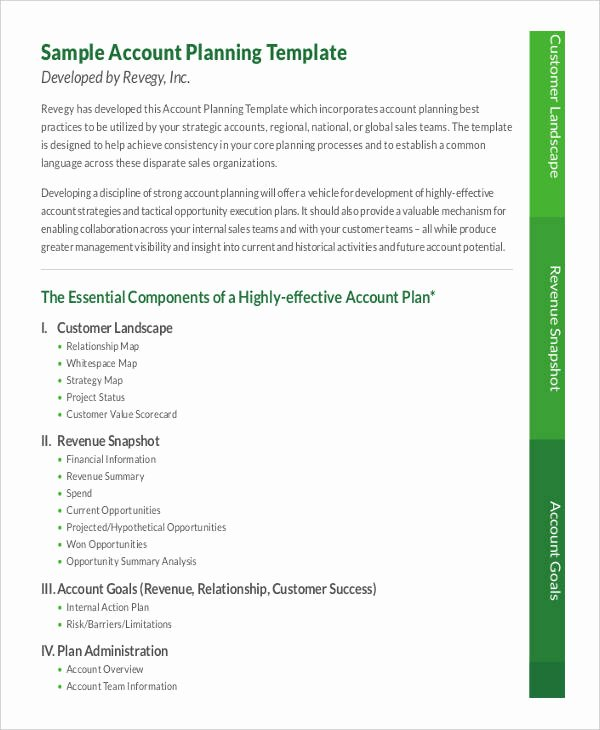 Account Management Plan Template Best Of 7 Strategic Account Plan Templates Free Sample Example