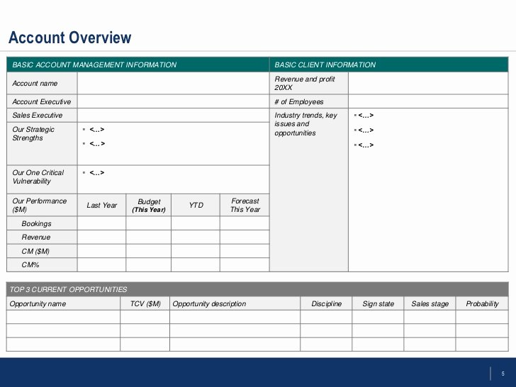 Account Management Plan Template Best Of Flevy Account Management Templates