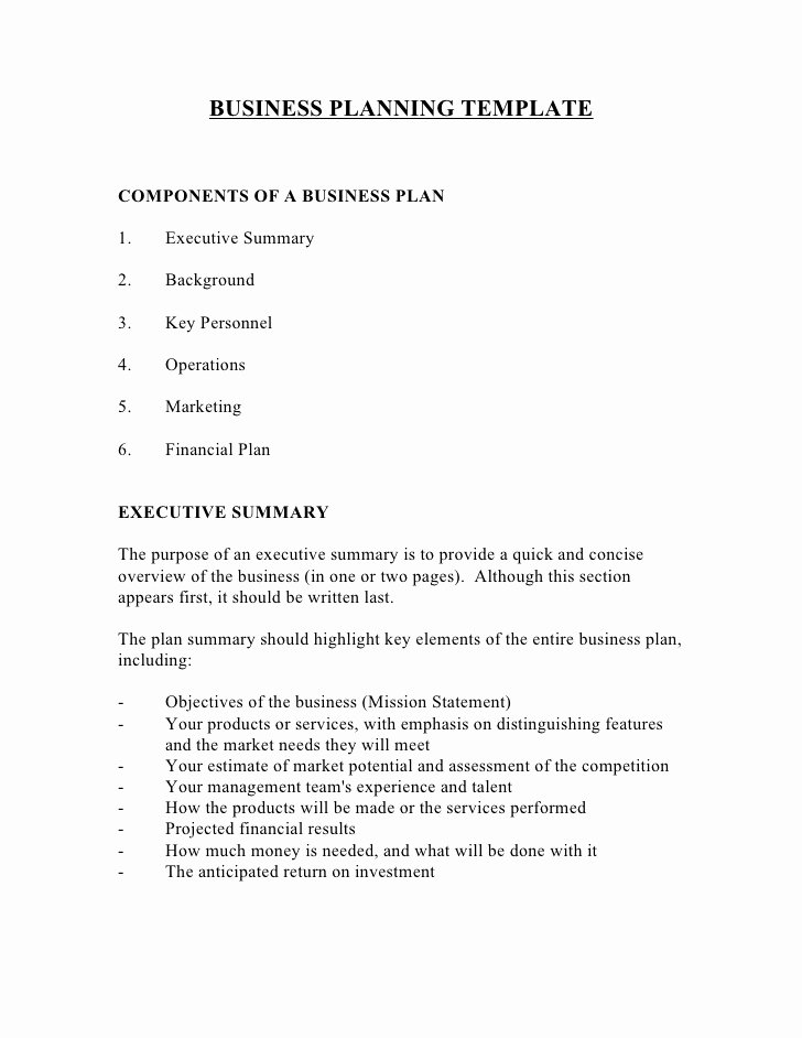 Bar Business Plan Template Fresh Biz Plan Template