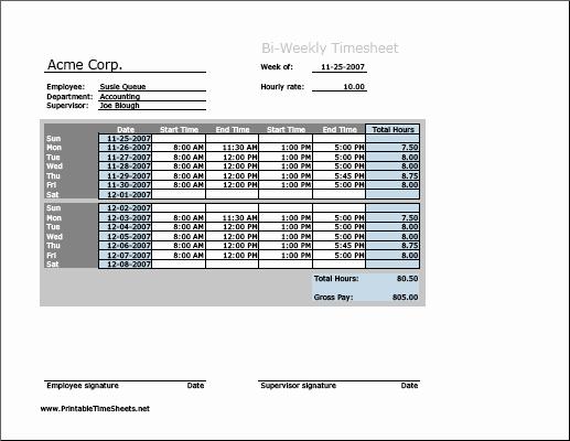 Bi Weekly Timesheet Template Elegant Biweekly Timesheet Horizontal orientation Printable Time