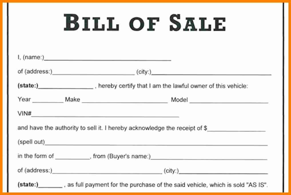 Bill Of Sale Word Template New 29 Of Bill Sale Template Microsoft