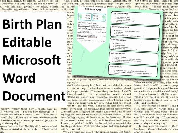 Birth Plan Template Pdf Awesome Items Similar to Printable Birth Plan Template Editable