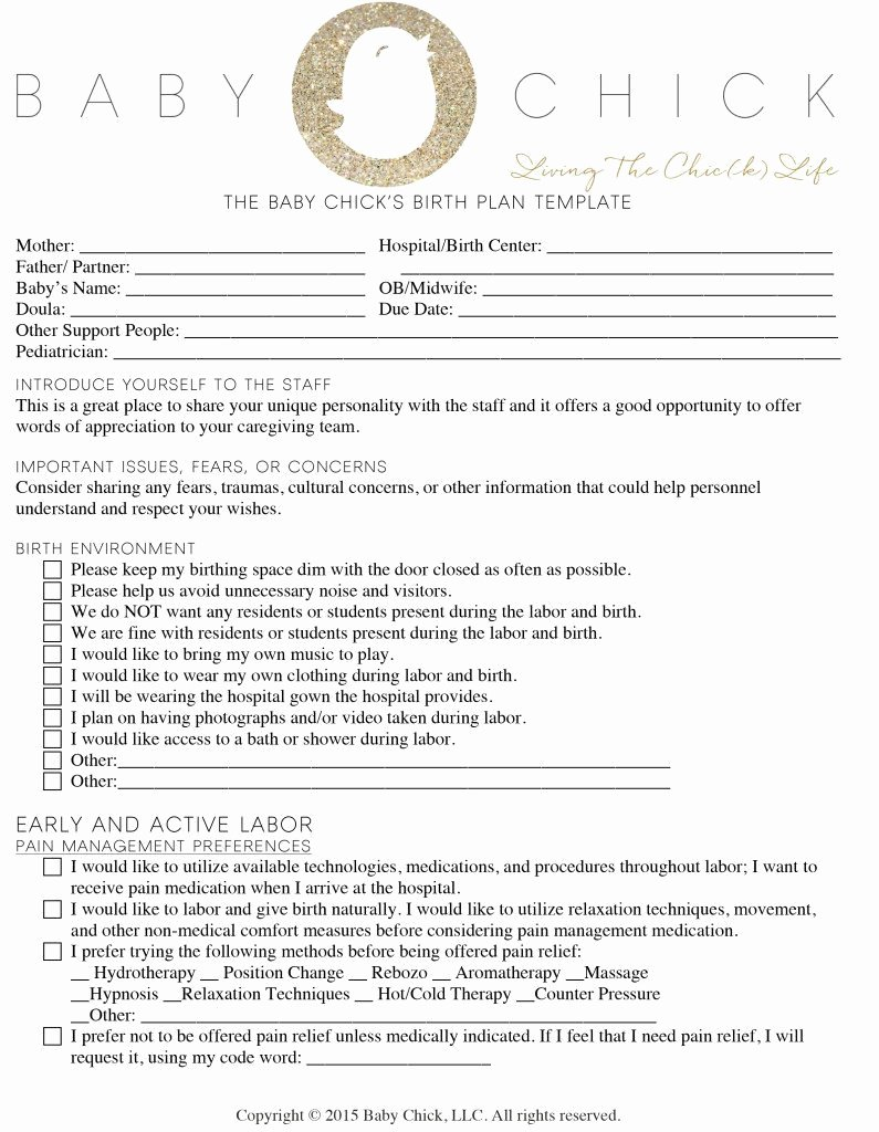 Birth Plan Template Pdf Lovely How to Create Your Perfect Birth Plan