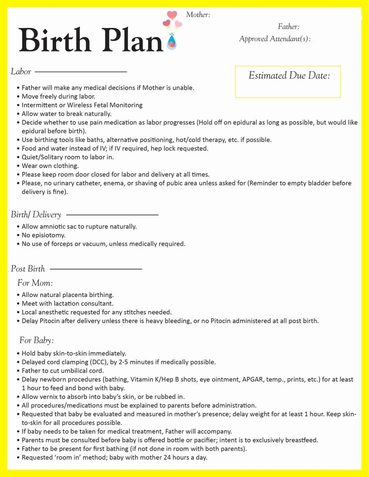 Birth Plan Template Word Best Of Best 25 Birth Plans Ideas On Pinterest
