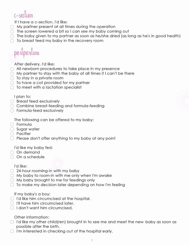 Birth Plan Template Word Doc Beautiful What Mommy Brain 10 Printable Checklists that Will