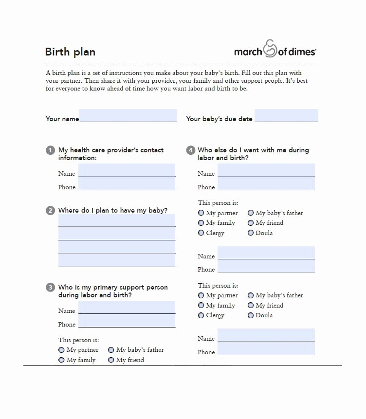 Birth Plan Template Word Doc Fresh 47 Printable Birth Plan Templates [birth Plan Checklist