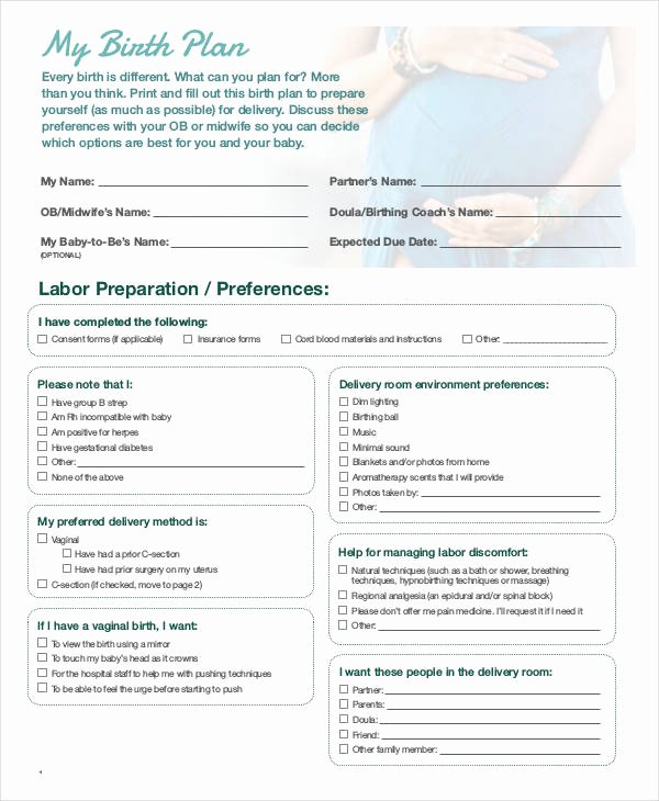Birth Plan Template Word Doc Lovely Birth Plan Template 17 Free Word Pdf Documents
