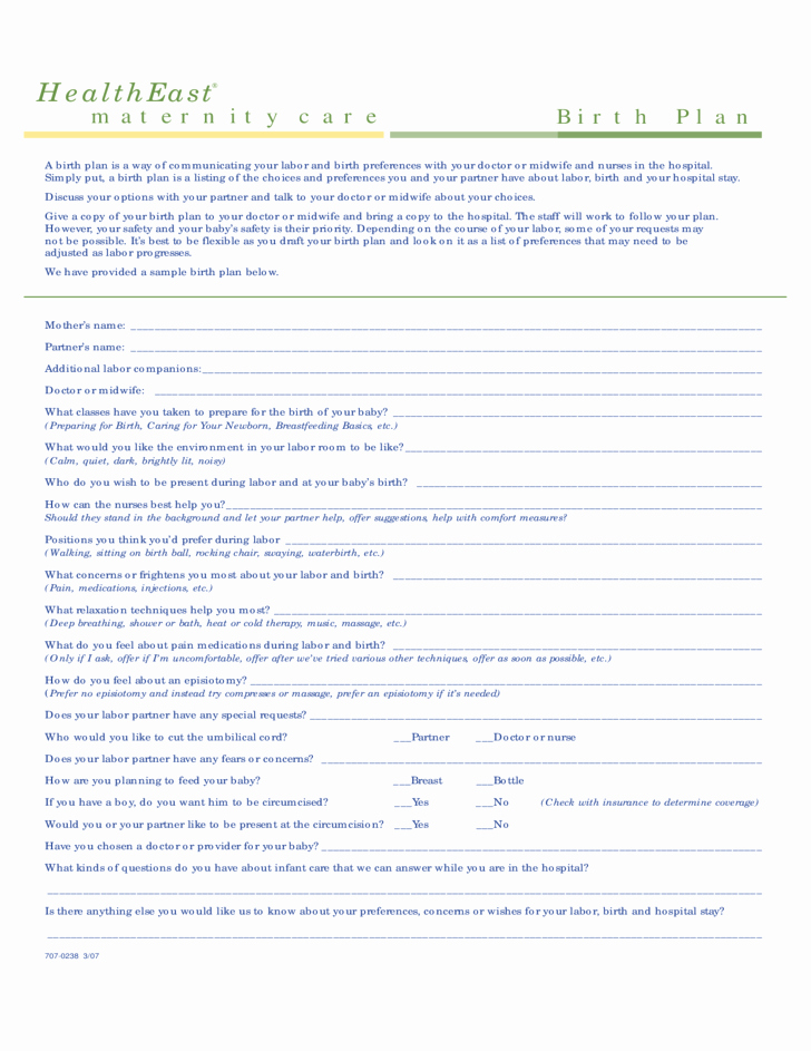 Birth Plan Template Word New E Page Birth Plan Template Free Download