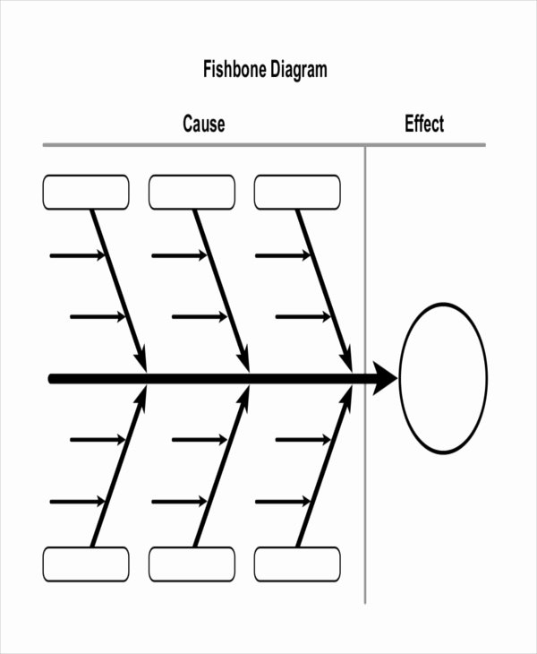 Blank Fishbone Diagram Template Lovely Diagram Template – 18 Free Word Pdf Documents Download