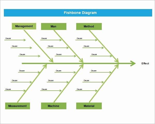 Blank Fishbone Diagram Template Lovely Sample Fishbone Diagram Template 13 Free Documents In