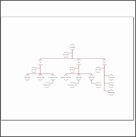 Blank organizational Chart Template Awesome 8 Blank organizational Chart Sampletemplatess
