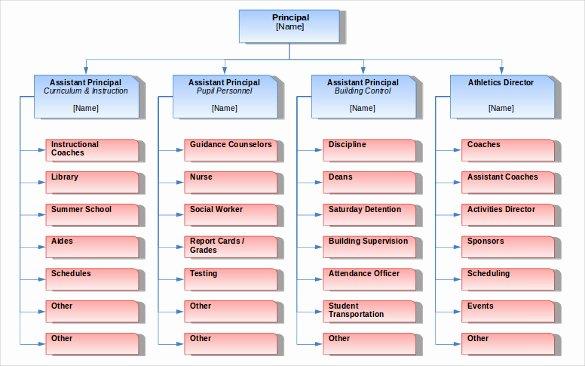 Blank organizational Chart Template Fresh Blank Chart Template 17 Free Psd Vector Eps Word Pdf