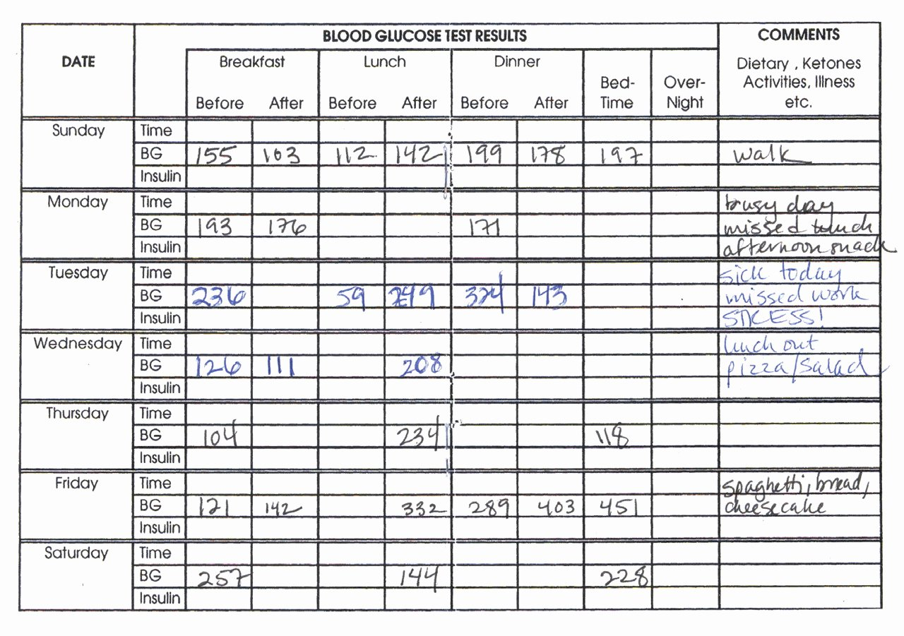 Blood Sugar Log Book Template Awesome Blood Glucose Monitoring A Practical Guide for Use In the