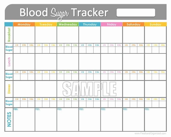 Blood Sugar Log Book Template Luxury Blood Sugar Log Template In Pdf format Excel Template