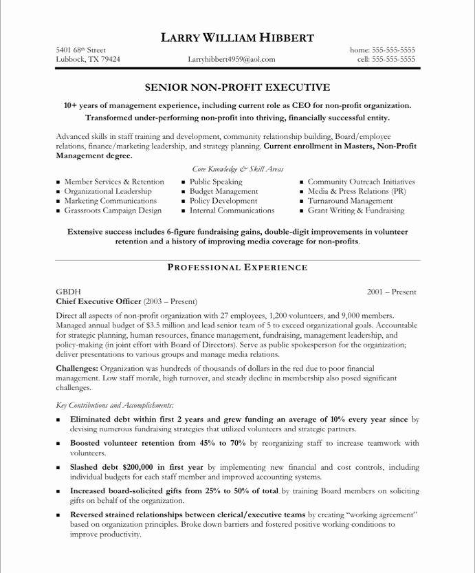 Board Resolution Template Non Profit Awesome Non Profit Executive Page1