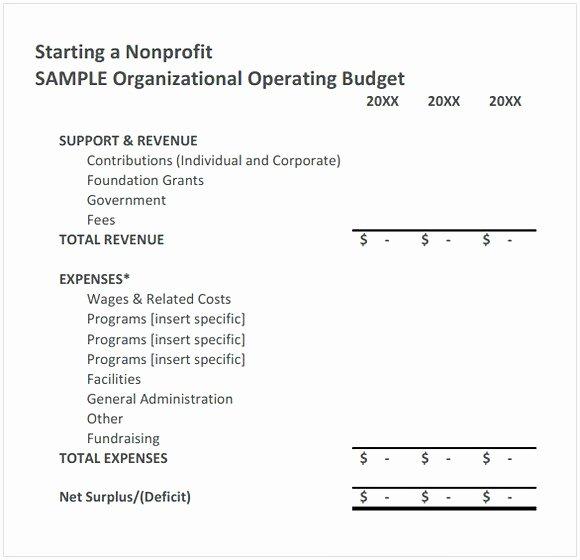Board Resolution Template Non Profit Unique Nonprofit Bud Template