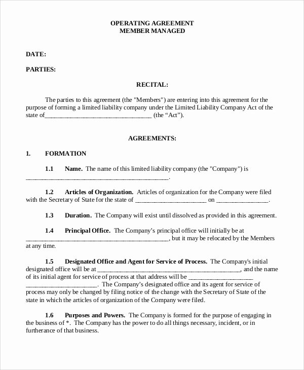 Business Operating Agreement Template Best Of Operating Agreement Template 13 Free Word Pdf Google