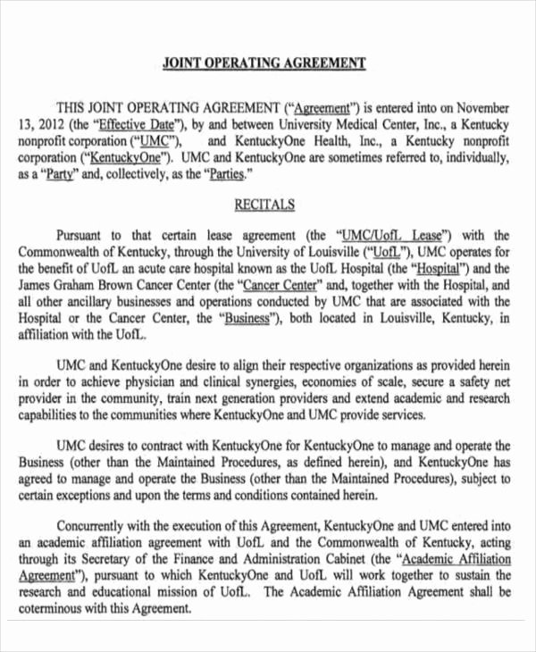 Business Operating Agreement Template Unique 14 Operating Agreements Samples Examples Pdf Google