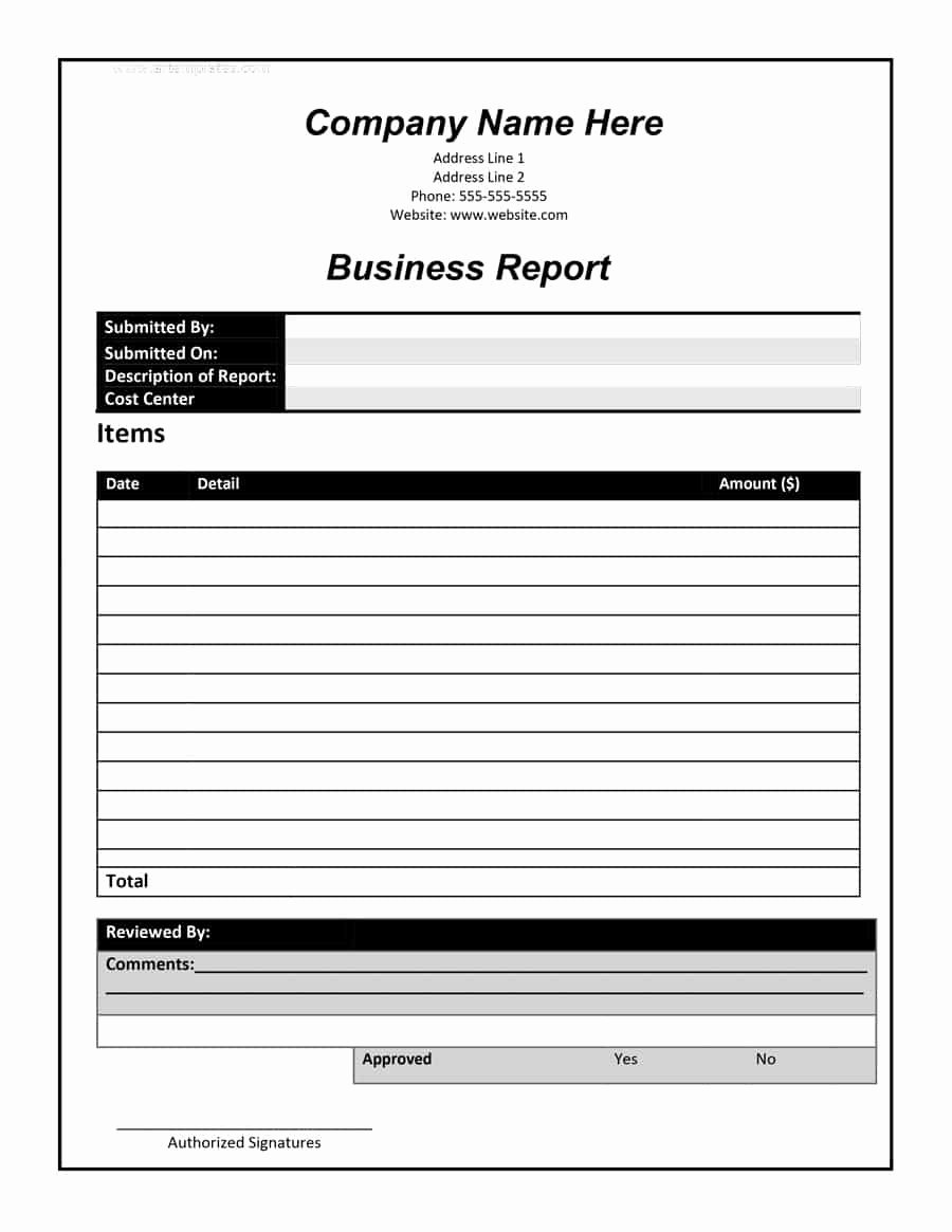 Business Report format Template Beautiful 30 Business Report Templates & format Examples Template Lab
