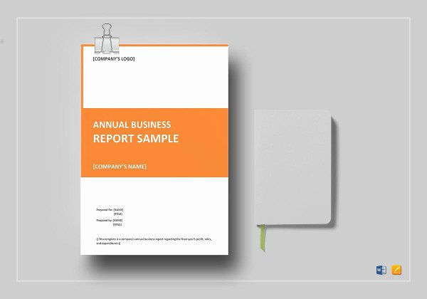 Business Report Template Word Beautiful 13 Annual Business Report Examples Pdf Word Pages