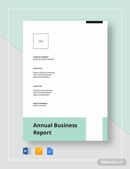 Business Report Template Word Luxury Free 29 Business Report Examples In Pdf Word