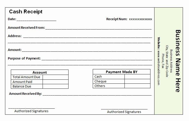 Cash Receipt Template Word Doc Fresh 41 Payment Receipt Templates Doc Pdf