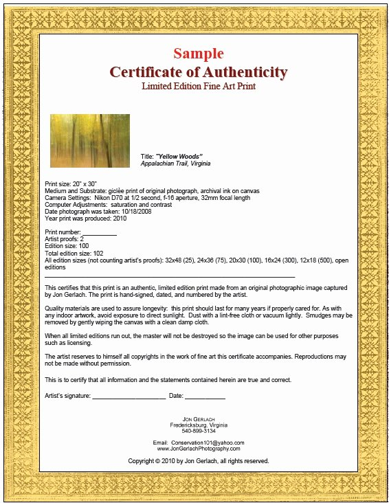 Certificate Of Authenticity Artwork Template Awesome 7 Free Sample Authenticity Certificate Templates
