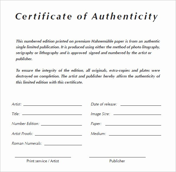 Certificate Of Authenticity Artwork Template Beautiful 6 Certificate Authenticity Templates Website