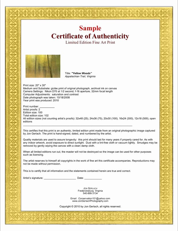 Certificate Of Authenticity Artwork Template Fresh Certificates Of Authenticity for Artists