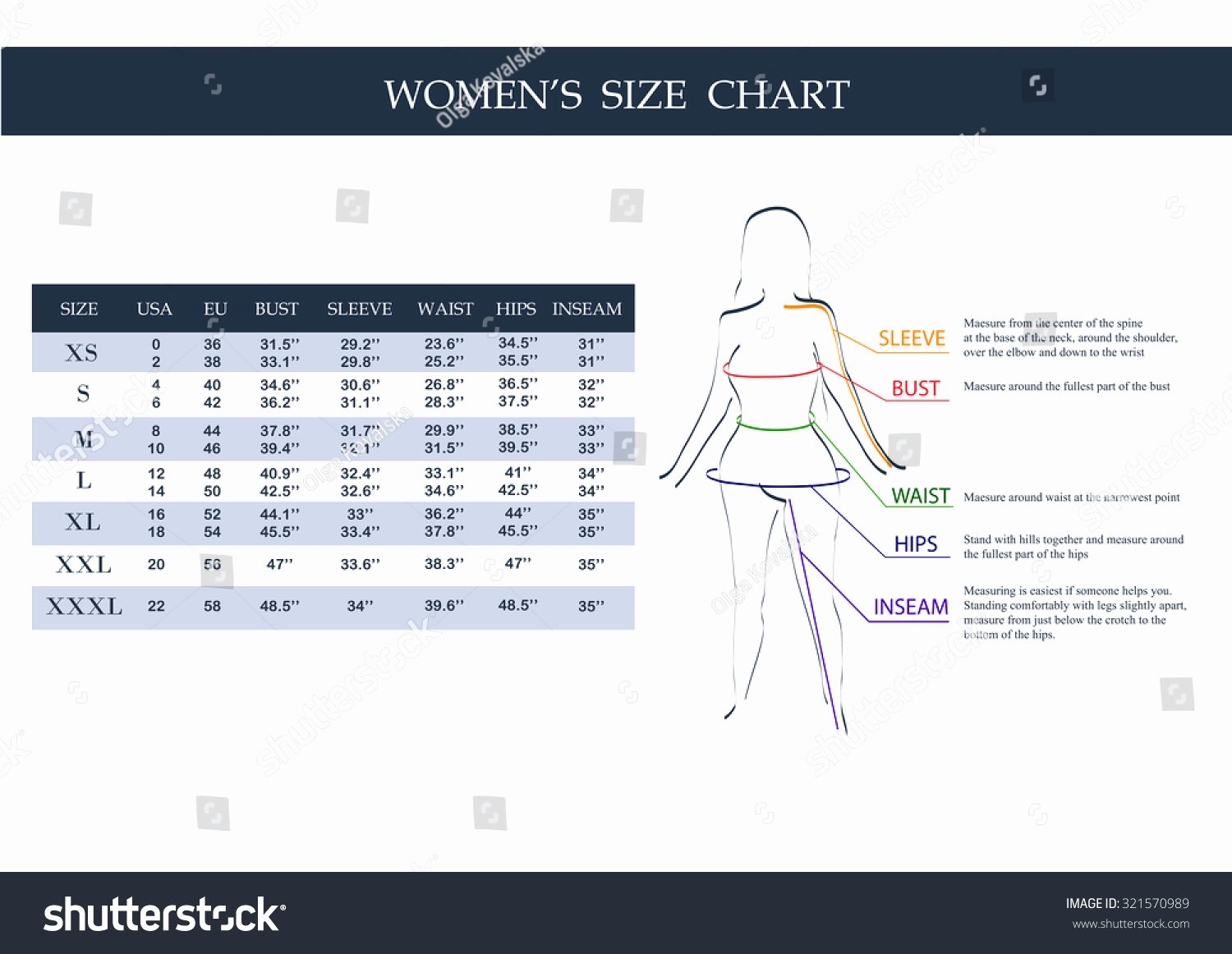 Clothing Size Chart Template Luxury Size Chart Women Measurements Clothing Female Stock Vector
