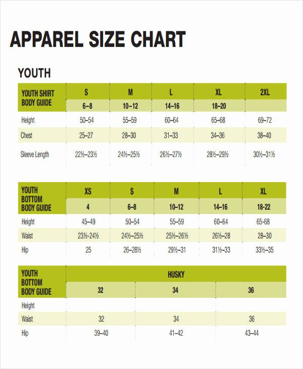 Clothing Size Chart Template Unique 48 Printable Chart Templates