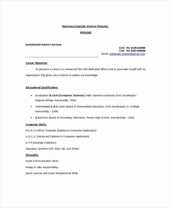 Computer Science Resume Template Beautiful Puter Science Resume Template for It Workers