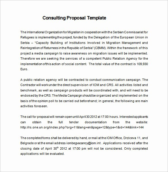 Consulting Proposal Template Word Elegant 20 Consulting Proposal Templates Doc Pdf Excel