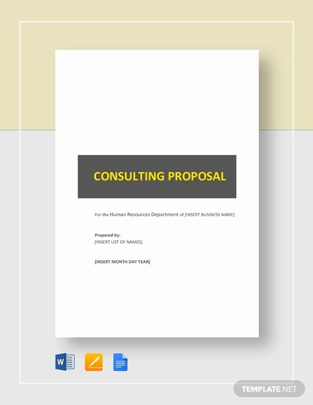 Consulting Proposal Template Word Fresh Consulting Proposal Template 18 Free Word Pdf format