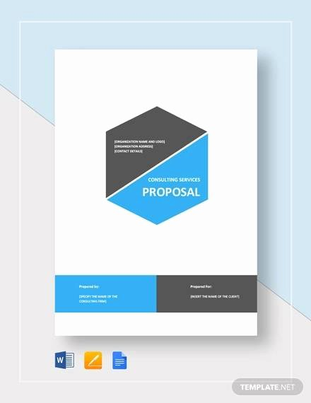Consulting Proposal Template Word Inspirational Sample Consultant Proposal 11 Documents In Pdf Word