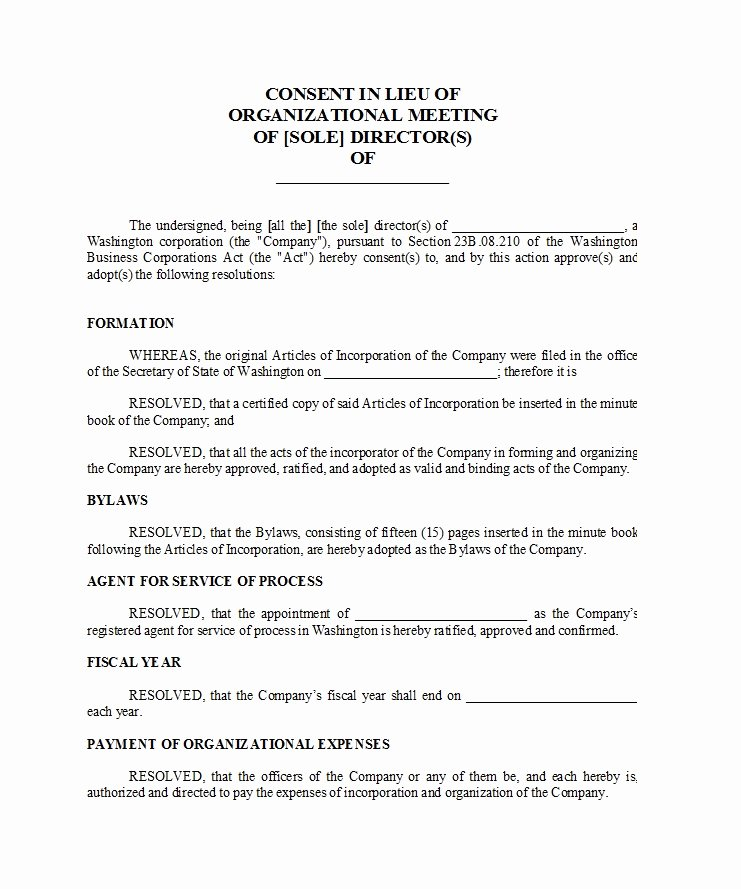 Corporate Minutes Template Word Lovely 33 Professional Corporate Minutes Templates Word Pdf