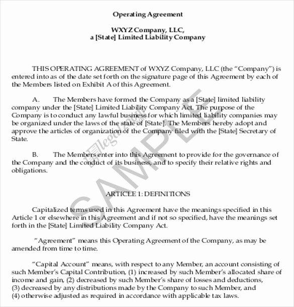 Corporate Operating Agreement Template Beautiful Operating Agreement Template 12 Free Word Pdf Document