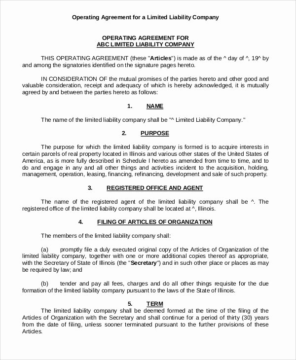 Corporate Operating Agreement Template Best Of Operating Agreement Template 13 Free Word Pdf Google