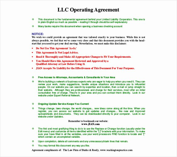 Corporate Operating Agreement Template Lovely Operating Agreement Template 12 Free Word Pdf Document