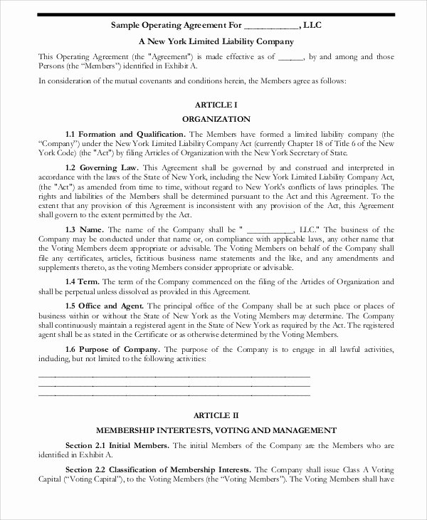Corporation Operating Agreement Template Beautiful Operating Agreement Template 13 Free Word Pdf Google