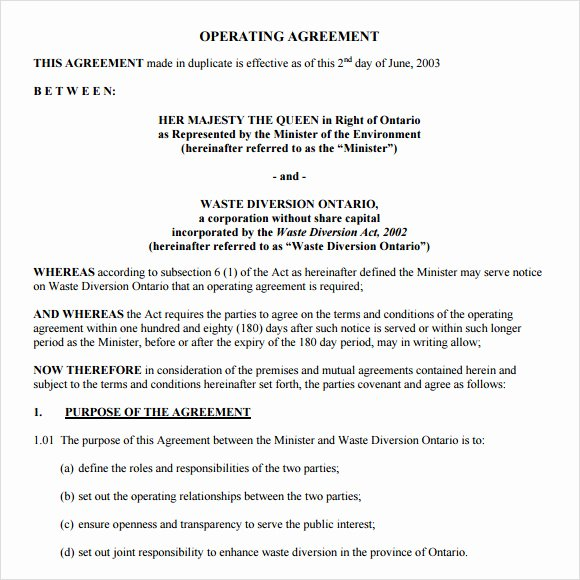 Corporation Operating Agreement Template Lovely Operating Agreement Template 8 Free Samples Examples